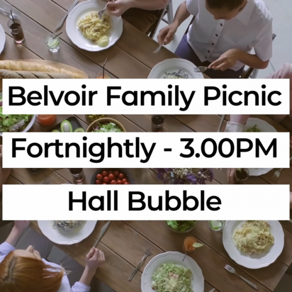 The Family Picnic
