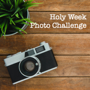 Photo Challenge – Friday